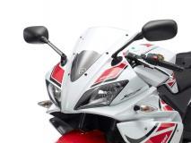 Yamaha-YZF-R125-WGP.jpg