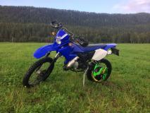 moped1111.jpg